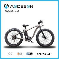 electric bike/electric bicycle from chinese factory
