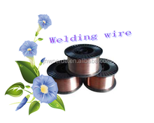 Floor price!! Welding wire for paint spray guns/asahi solder