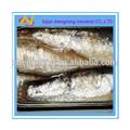 Chileno 125gs enlatados sardina de pescado en aceite vegetal ( ZNSVO0024 )