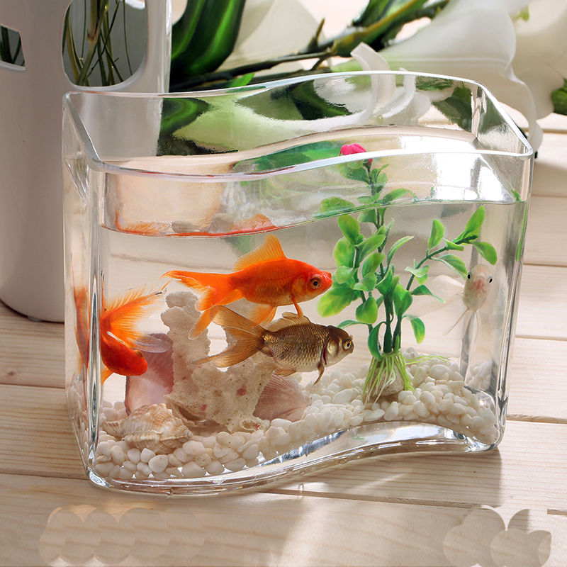 Handmade Glass Transparent Fish Tank Different Types