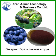 Treatment of muscle pain acai berry extract/Acai berry extract powder
