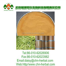 Good water soluble Witch Hazel Extract/
