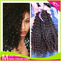 Beauty Products for Female Cambodian Kinky Curly Hair Weave