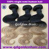 5A Grade Indian Hair High Quality Poular Ombre Color Weft