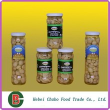 Factory Price canned white buttom mushroom slice in brine 2840g