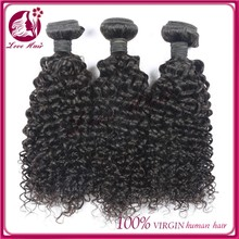 Top quality virgin 100 human jerry curl indian hair, top quality beautiful indian jerry curl hair weave
