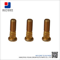 Stainless Steel Good Quality and Customized Hub Bolt Truck
