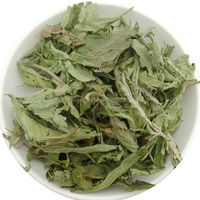 Tian ju ye herb medicine hot sale best Quality 100% Natural Dried Stevia Leaf