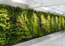New design vertical artificial green wall for wall decoration artificial grass wall