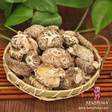 Dried Shiitake Mushroom with Stick(White Flower)