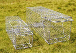 Cheap Folding Rabbit Chicken Cages Different Size