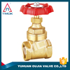 os & y stem gate valve NPT threaded connection with blasting cw 617n material with electric valve control and plating sand blast