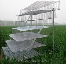 2015 made in china codorniz agricultura / codorniz jaula capa venta