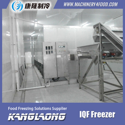 Hot Sale Green Peas industry freezer for fruits and vegetable