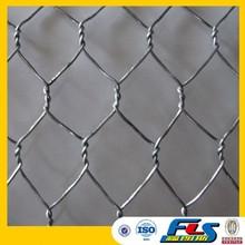 Anping Hexagonal Mesh/Hexagonal Wire Mesh