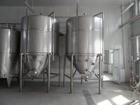 China best stainless steel fermentor tank