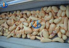 Fruit&vegetable peeling machine/potato peeling and cutting machine/pumpkin peeling machine