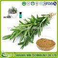 Los proveedores de china certificado iso de alta calidad antioxidante extracto de romero/el ácido rosmarínico