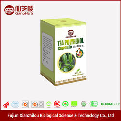 Made in china slimming products green tea softgel capsules