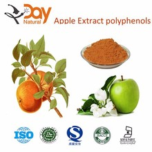 Manufacturer Supply High Quality Apple Extract