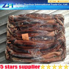 Frozen squid with the best price, high quality illex squid, whole squid seafood