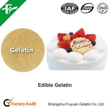 Edible Gelatin For Dairy And Desserts