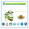 El certificado gmp 100% natural puro icariina 50 60 80 98 epimedium extracto de gnc