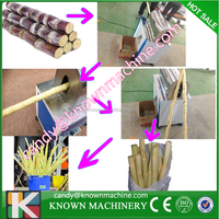 200-300KG /H sugarcane peeling machine / sugar cane stripper
