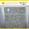 /p-detail/Azul-del-granito-del-diamante-60-x-60-300006008316.html