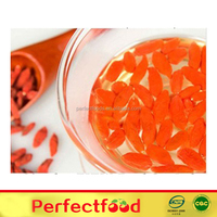 Dried fruit dried goji berry supplier