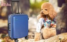 Fashion design sanzhiniao luggage/three birds travel box