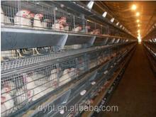 2015 NEW HOT !!! Chicken coop / Chicken house/chicken cage for sale