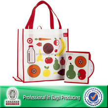 Lead Free Non Woven Custom Foldable Reusable Shopping Bags