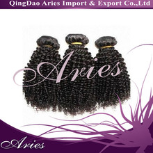 New Style Brazilian Kinky Curly Remy Hair Weave