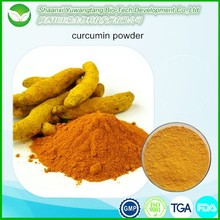 Factory supply best price curcumin extract