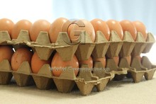 Compostable wheat straw 30 egg tray from virgin straw pulp not waste paper