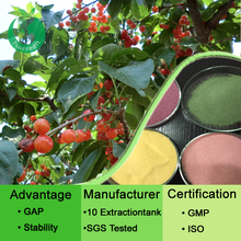 Natural and green juice powder in stock fruit and vegetable powder