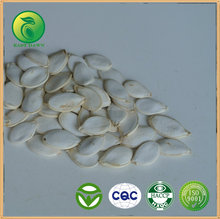 Artificial organic food snow white pumpkin seeds
