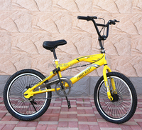 Two wheels Powered Kids BMX Bicycle /Kids Sport Bike