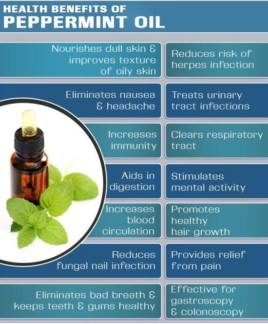 peppermintoil-info