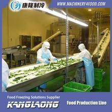 2000kg/h linea di produzione del gelato
