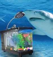 JEVa chinese maker acrylic glass big aquarium fish tank
