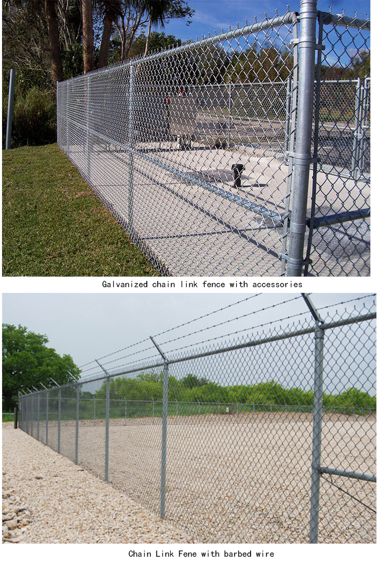 Chainlink fences.jpg