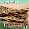 100% Natural Angelica Extract, Angelica Extract Powder, Angelica sinensis Extract