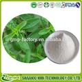 Extrait de stevia, naturelles extrait de stevia, le stévioside, stévioside naturelles