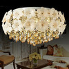 Novel design crystal ball ceiling light suspended ceiling light