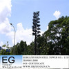 zhuoxin telecom steel camouflage towers