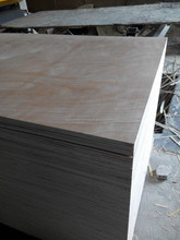 High quality commercial and waterproof plywood