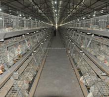 Poul-Tech broiler chicken equipment /chicken cage/bird cage