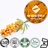 Factory supply Natural Plant Extract 10% 20% Flavone 20% Isorhamnetin Holy Thorn Extract, Sea Buckthorn Extract